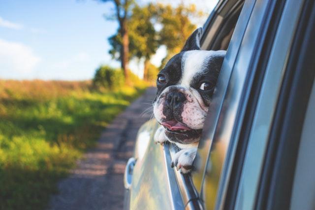 Scelta fra station wagon e SUV: mai così facile